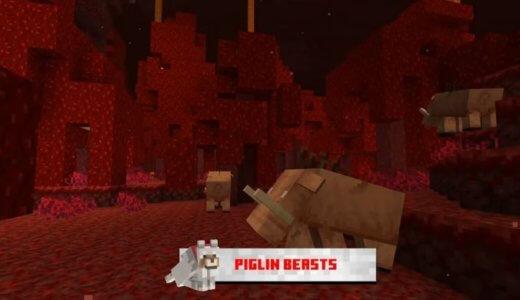 【1.16】ピグリンビーストの名前を募集中!【Minecraft】