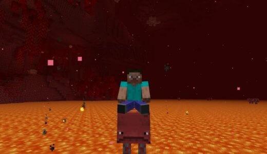【Minecraft】マグマの上を移動できる!「ストライダー」の特徴を紹介